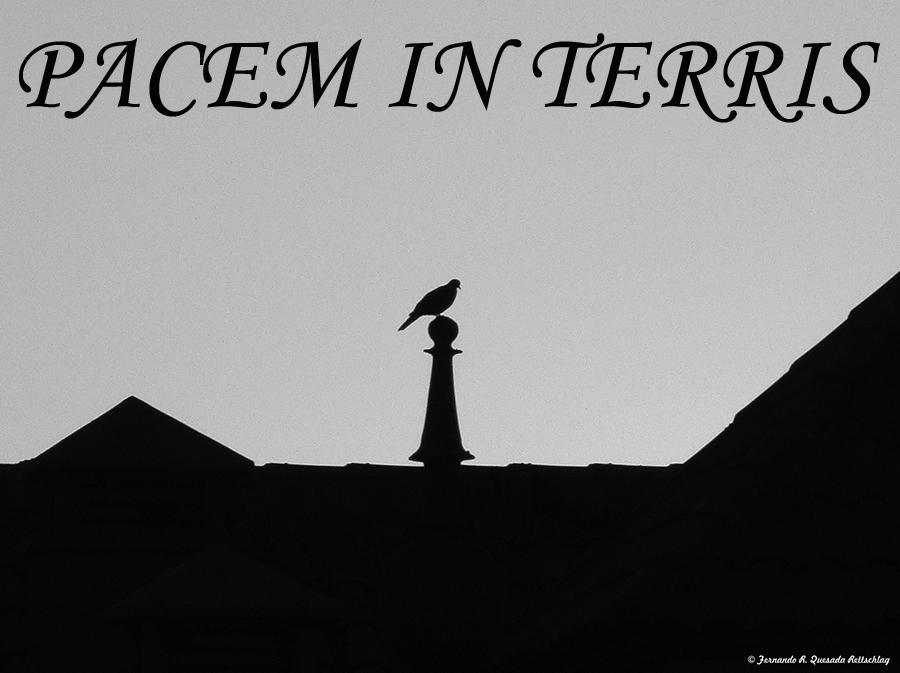Pacem in Terris