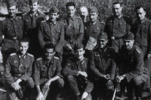 División Azul 1943