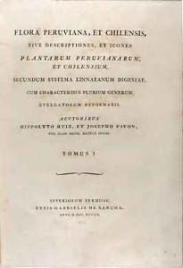 FloraPeruviana